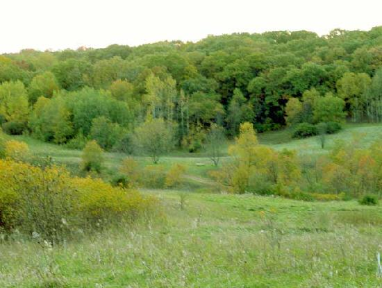 Whitewater, WI: Hike the Kettle Moraine and explore all its beauty.