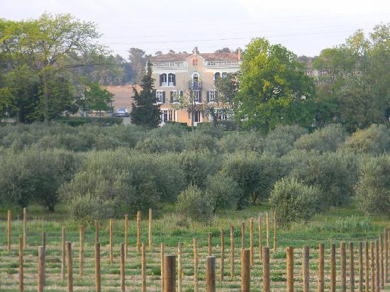 Chateau Canet: View from the vineyards
