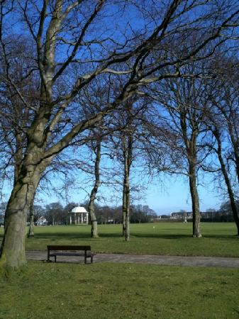 Αμπερντίν, UK: Duthie Park - February 2011