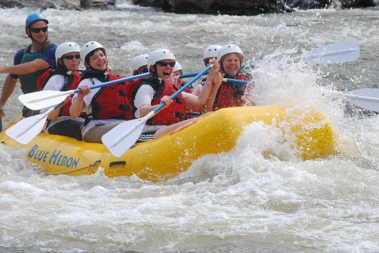 Blue Heron Whitewater : Wild Women on the water