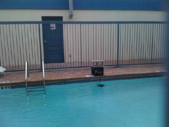 Quality Inn & Suites - Round Rock: Brick holding crate down!