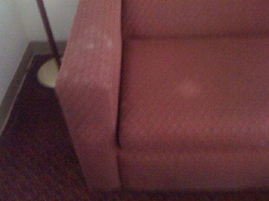 Quality Inn & Suites - Round Rock: Nasty Sleeper Sofa!