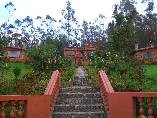 Ali Shungu Mountaintop Lodge