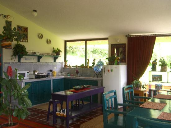 Ali Shungu Mountaintop Lodge: Kitchen area of my cottage