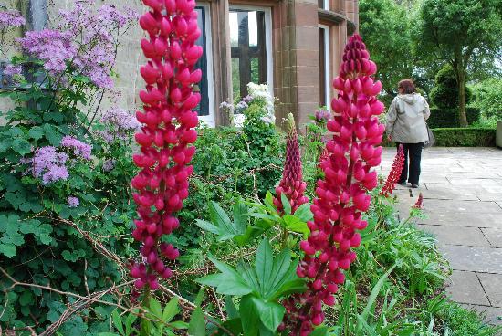 Lakeland Holiday Park - Haven : Holker hall flowers