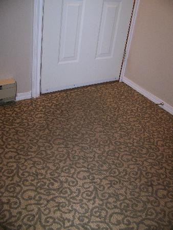 Grouse Creek Motel: Entry carpet