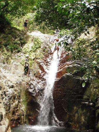 Del Sur Adventures: rappelling puerto rico adventures