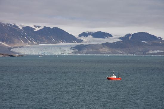 Ny Alesund, Norway: Krone Glacier