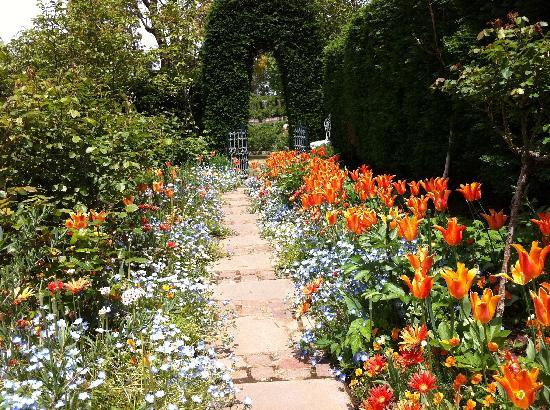 Akao Herb and Rose Garden: なかなかきれいな花の小道