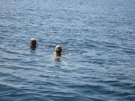 Paski's Adventure Sport Tours: another friend swimming away with the turtle