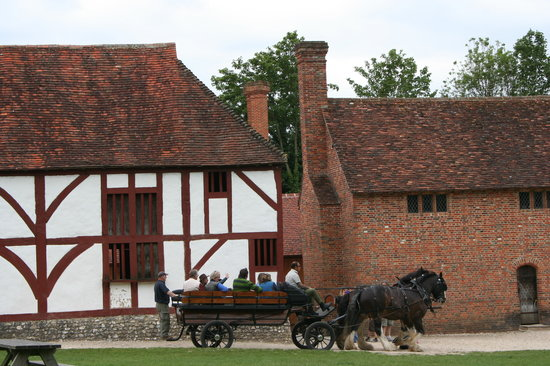 Weald & Downland Living Museum : Horse Carriage Rides