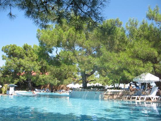 MARTI Myra: On the pool