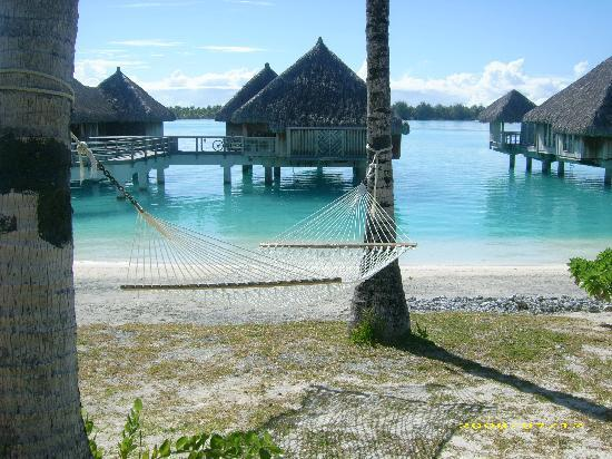 The St. Regis Bora Bora Resort: camminando