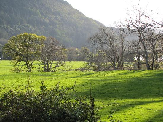 Salmon Leap Farm: Near Salmon Leap B&B - Killarney (Muckross)