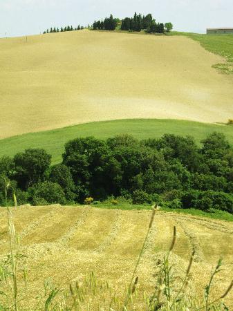 Due Terre Agriturismo: geometrie