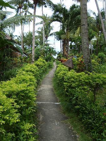 Coco Beach Island Resort: Walkway