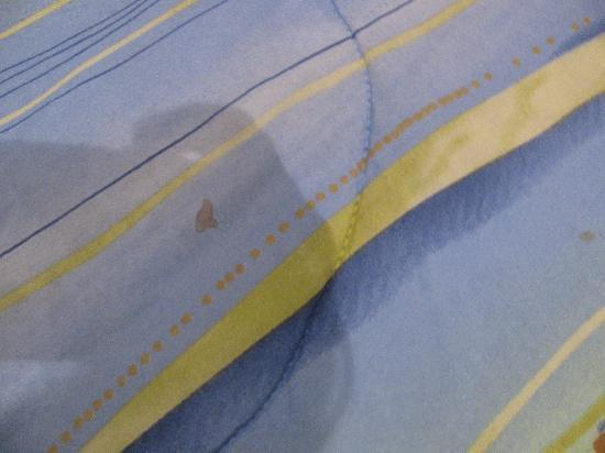 Jaco Bay Resort Condominium: blood stain on comforter