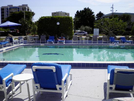 Dolphin Inn: Pool