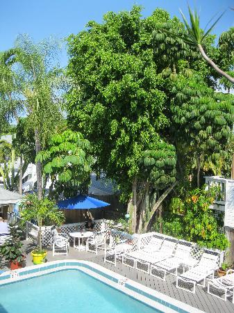 The Palms Hotel- Key West: pool area