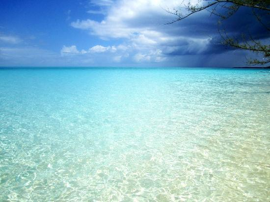 Shannas Cove Resort: Water as clear as a swimming pool.