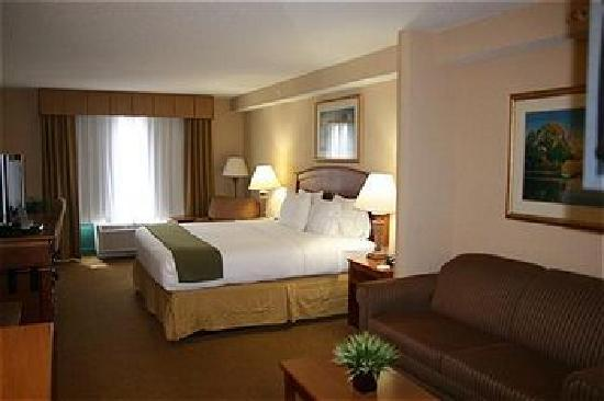 Holiday Inn Express & Suites Florence I-95 & I-20 Civic Ctr: Suite
