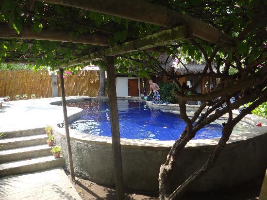 Manta Dive Gili Air Resort: The pool