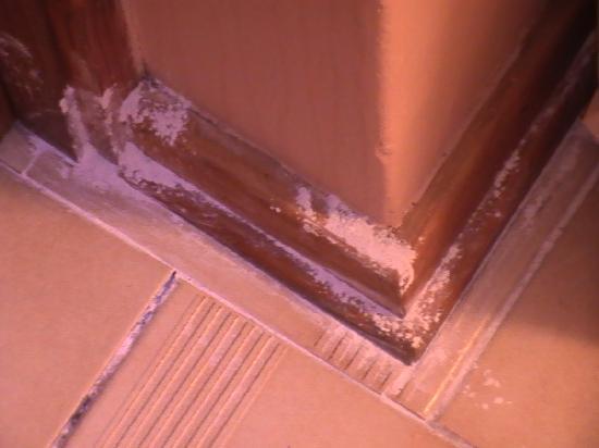 Jock Sabie Lodge: Resti di stucco dopo i lavori...