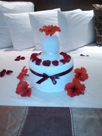 Valentin Imperial Maya: Nice birthday touch Valentin!!