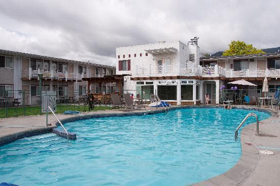 Bowmont Motel: Beautiful Heated Pool