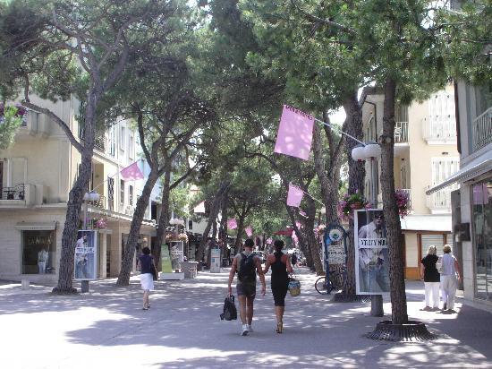 Riccione, Italië: V.le Caccarini  a 300 mt. da Eden