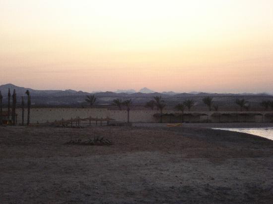 Hotel Coral Sun Beach Resort : tramonto