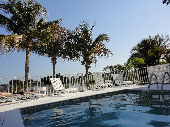 ماركو آيلاند ليكسايد إن: pool area