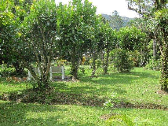 Cabanas Potosi: lovely garden