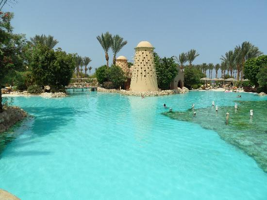 The Grand Makadi Hotel: Part of the pool...