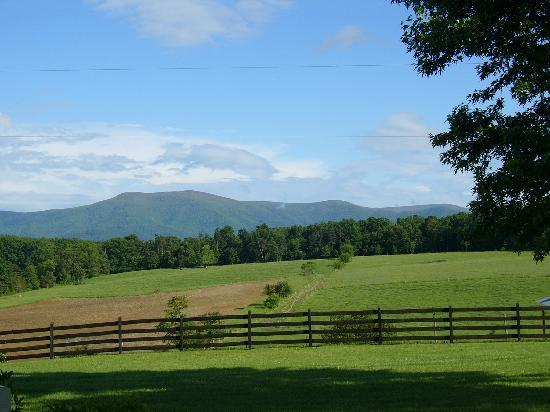 Piney Hill Bed & Breakfast: A view from the porch