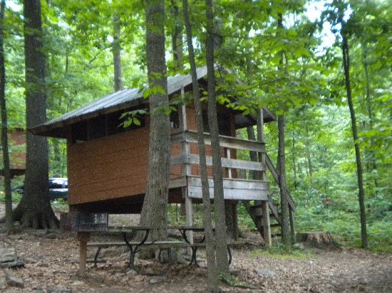 Maple Tree Campground: one of the treehouses