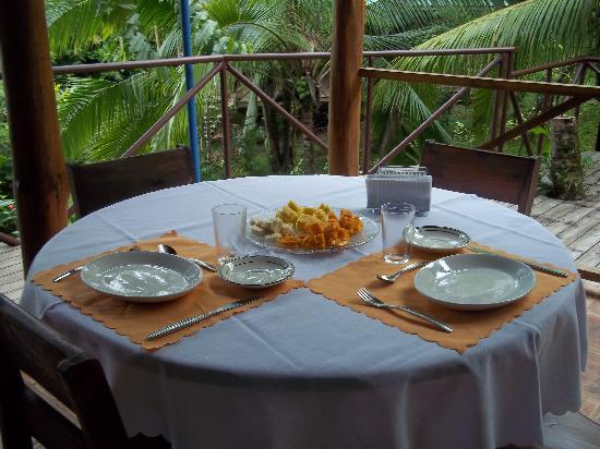 Albergue Alma de Hatillo: Fresh organic fruit breakfast