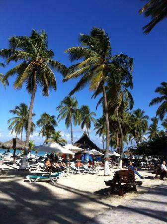 Hyatt Regency Aruba Resort and Casino: Beach at Aruba Hyatt
