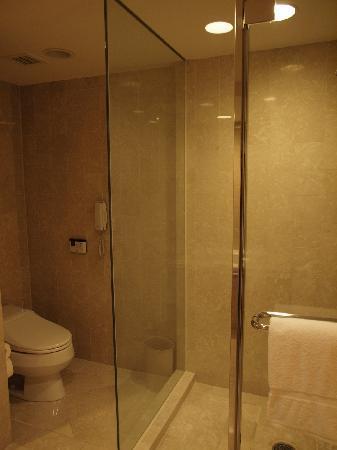 The Sherwood Taipei : トイレは台湾製ウォッシュレット
