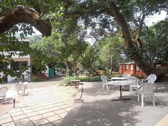 Regal Hotel: close to nature
