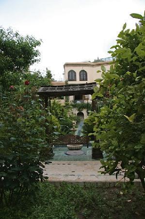 Riad Alkantara : Garden
