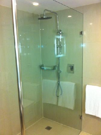 Novotel Sydney Rooty Hill: Large walk in shower with hand held as well