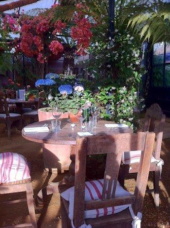 Petersham Nurseries Cafè: dinner at the nurseries