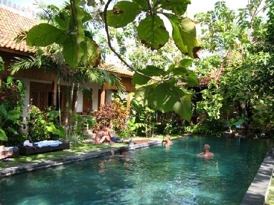 Villa Kampung Kecil: pool and one of the houses