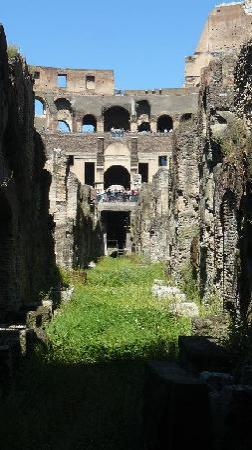 New Rome Free Tour: One of the passages under the Colossem.