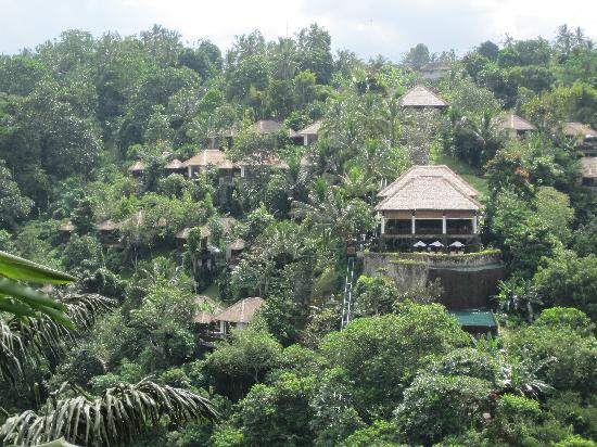 Ubud Hanging Gardens as seen from the temple across the valley ...