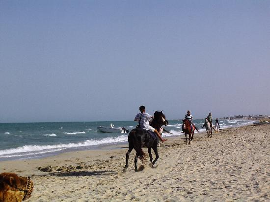 Vincci Helios Beach: Plage de l'hôtel