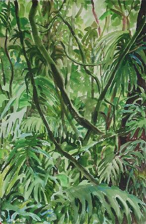 Sarah's Gallery : Jungle Scene