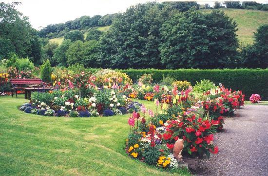 Lodfin Farm Bed & Breakfast: Summer Garden