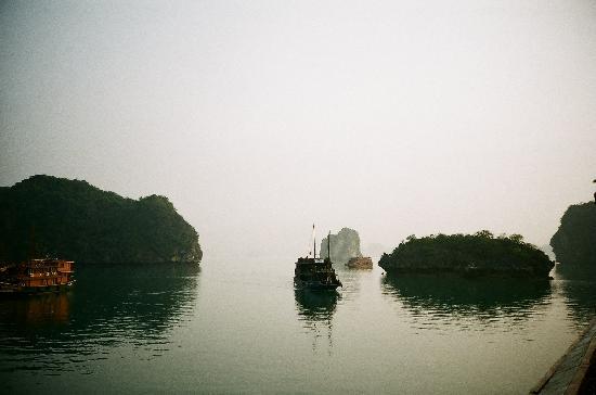 하노이 하모니 호텔: 하모니에서 예약하고 갔던 하롱베이